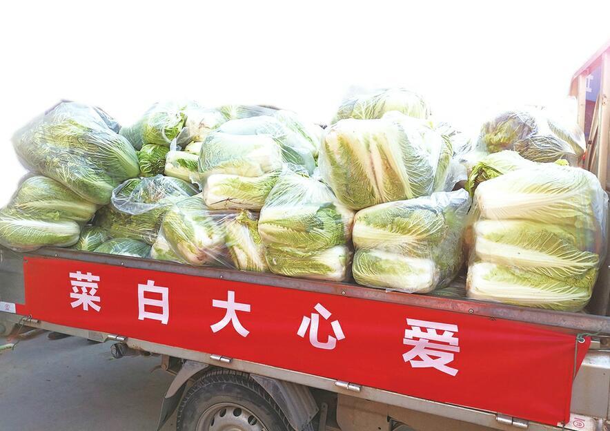[创文明城市]天桥区渣土运输单位连续9年的慈善义举 万余公斤白菜送给环卫工